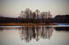 naked (daimak) Tags: trees reflection lake winter lithuania landscape outdoor water sonyilce7 sigma28300mmasphericalif