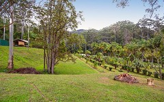 3303 North Arm Road, Girralong NSW