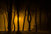 Siluetas. (Roberto_48) Tags: noche nocturna aranda arandadeduero virgendelaviñas parque