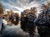 Along the canal (Fin Wright) Tags: ianwright 2017 blip finwrightphotographycouk fin finwright finwrightphotography ian canal ellesmere shropshire shropshireunion canon g1xmkii snow ice sky dawn sunrise trees burst reflection reflections