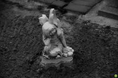 Sad angel (petrOlly) Tags: europe europa poland polska polen lodz łódź cemetery autumn fall bw object objects