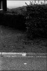 150 . (hugobny) Tags: ilfordhp4 hp4 argentique caffenol analogue pentax p30