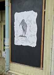 Street Art, Binghamton, NY (Robby Virus) Tags: binghamton newyork ny upstate street art bird window master dry cleaners