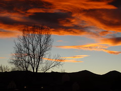 sunset from the front yard (jeffies.stuff) Tags: sky sunset clouds tree hills orage winter blue orange sony jeffsmith