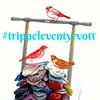 Trippelvott (osloann) Tags: trippel vott votter mittens eventyrvotter strikking knitting kal vottelauget