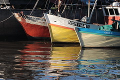 Rojo, amarillo y azul (Ce Rey) Tags: challengegamewinner marina barcos barco agua canon eos80d eos unedited harbour eltigre argentina madera wood red challengeyouwinner