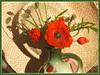 Coquelicots (MAPNANCY) Tags: coquelicots chapeau paille vase été