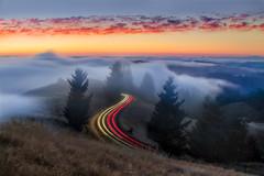 Road to Enlightenment (rootswalker) Tags: twilight longexposure fog mounttamalpais sunset redwoods lighttrails nikond810