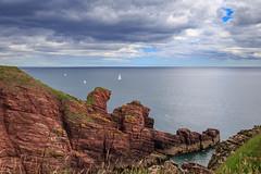 Yachts near Arbroath (Noel Wyn Davies) Tags: sailing boats yachts cliffs red sea northsea arbroath seatoncliffs scotland uk summer sandstone coast