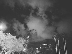 Day 22 ⛼☁ __________________________________  #bwphotography #blackandwhite #florida #FROtography #photographer #challenge #30daychallenge #building #downtown #clouds #cloudysky #trees #palmtrees #buildings #downtowntampa #nighttime #art #igersoftampa #ig (am13er) Tags: blackandwhite nighttime day22 30daychallenge clouds igersofflorida downtowntampa florida trees cloudysky igersoftampa downtown bwphotochallenge art palmtrees photographer bwphotography building bwphoto buildings blackandwhitephotochallenge challenge frotography