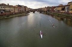 "Rowing on the Arno • <a style=""font-size:0.8em;"" href=""http://www.flickr.com/photos/45090765@N05/37751685704/"" target=""_blank"">View on Flickr</a>"
