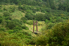 "Jingshan Suspension Bridge, Yangmingshan National Park菁山吊橋 • <a style=""font-size:0.8em;"" href=""http://www.flickr.com/photos/106485622@N02/37757595154/"" target=""_blank"">View on Flickr</a>"