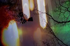 [    -    apocalypseREDUX    -    ].pnm.RAW.png (ǝlɐǝq ˙M ʍǝɥʇʇɐW) Tags: film analog multipleexposure 35mm apocalypse redux liminality texas sky light colors windmill eternallytilting trees up mistertrona chaos mayhem calm tronaremix spectral irradiance lordrayleigh night geomagnetic field flux radiation holga lomo space minutestogo liminal frame fire chargedparticles atomicoxygen 5577 redscale