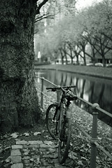 bike@Kö, Düsseldorf 30 (Amselchen) Tags: bicycle trees water reflection bokeh blur dof depthoffield kö düsseldorf mono monochrome bnw blackandwhite sony a7 alpha7 zeiss carlzeiss sonnart1855 sonnar5518za fe1855za fe55mmf18za sonyilce7