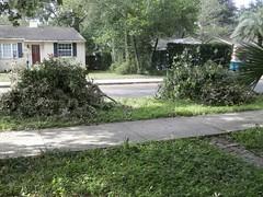 Irma 2017 (Marisa y Jaime) Tags: hurricane irma hurricaneirma orlando storm 2017 stormdamage florida