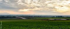 View over Richborough (philbarnes4) Tags: richborough kent england philbarnes nikond5500 dslr cloud sun view