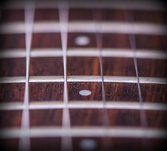MacroMonday - Fret (terry@sevensixty images) Tags: macromonday memberschoicemusicalinstruments guitar fret strings