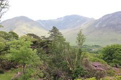 IMG_3255 (avsfan1321) Tags: kylemoreabbey ireland countygalway connemara landscape mountains mountain green