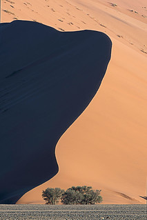 Soussusvlei Dune