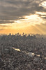 Golden City (aludatan) Tags: cityscape city sunlight rays goldhour highangle skytree travel tokyo japan 城市 日光 黃金時間 東京晴空塔 晴空塔 東京スカイツリー 旅行 日本 東京 東京天空樹 buidling architecture buildingandarchiecture