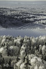 _36A0443 (Ed Boudreau) Tags: hoarfrost trees conifer sbow fost frostedtrees alaska alaskalandscape landscape landscapephotogrpahy winter winterscene winterscape eagleriveralaska eagleriver usa