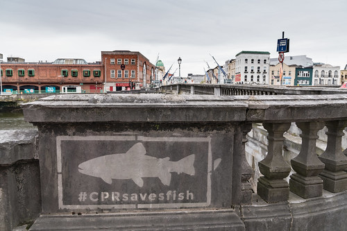 EXAMPLES OF STREET ART IN CORK CITY [PHOTOGRAPHED 2017]-133904