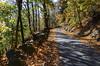 234 Roadway (Felton Davis) Tags: palisades njpalisades huylerslandingtrail thelongpath georgewashingtonbridge