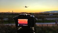 Tarda de diumenge (bertanuri bcn) Tags: bcn barcelona airport spotting spotter cat catalunya catalonia catalogne panasonic lumix leica fz45 fz82 lg lgg6