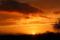 At the going down of the sun and in the morning... (AngharadW) Tags: remembrance settingsun remembrancesunday drystonewall trees clouds horizon tree angharadw flatbatterydebacle flatbattery sunset