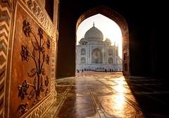 Taj Mahal (Jhaví) Tags: tajmahal india agra arco arquitectura travel viajar heritage patrimoniodelahumanidad asia