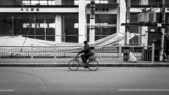Straight forward (Go-tea 郭天) Tags: yantaishi shandongsheng chine cn yantai bicycle bike ride riding movement sport health healthy old grandpa alone lonely construction road cold winter moving candid hat street urban city outside outdoor people bw bnw black white blackwhite blackandwhite monochrome naturallight natural light asia asian china chinese shandong canon eos 100d 24mm prime man