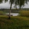 Autumn (Stefano Rugolo) Tags: stefanorugolo pentax k5 smcpentaxda1855mmf3556alwr squarefomat tree birch boat lake grass landscape reed reflection autumn sweden hälsingland sverige