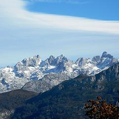Picos de Europa (nuska2008) Tags: nuska2008 nanebotas picosdeeuropa montañasnevadas nubes clouds montañas olympussz30mr asturias beleño españa excursiones europa ärboles nieve cumbres cimas landscape
