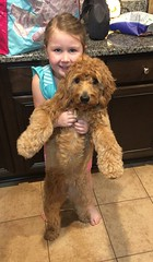 Kasey's sweet Charlie with her BFF!