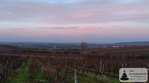 Selzen - SunriseRun zwischen Selzen und Schwabsburg