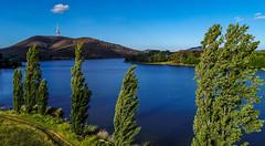 Sunday Afternoon at the Lake (Rajeel Naicker) Tags: australia canberra lake landscape spring2017 sunday afternoon nikon d7200