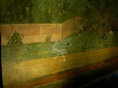 Gli affreschi della villa di Livia a Palzzo Massimo _11