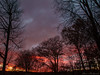 Morning Sky_16512 (smack53) Tags: smack53 sky sunrise morning morningsky paintedsky trees silhouettes autumn autumnseason fall fallseason westmilford newjersey canon powershot g12 canonpowershotg12