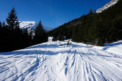 _DSC4168 (farix.) Tags: ski skitour skitury snow skitur kopa kondracka kondrackakopa tatry tatras tatryzachodnie kalatówki kondratowa hala schronisko kondrackie