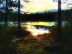Oasis of peace (Bessula) Tags: bessula nature lake forest reflex evening icecover tree sky sunset grass water wood dusk scenery sweden calmly light autumn fall höst