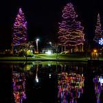 """Light Up DT, Tree Lighting Ceremony <a style=""""margin-left:10px; font-size:0.8em;"""" href=""""http://www.flickr.com/photos/125384002@N08/38641797821/"""" target=""""_blank"""">@flickr</a>"""