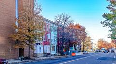 2017.11.26 Carter G. Woodson National Historic Site, Washington, DC USA 0900