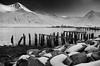Pier at Egilsstaðir (Salvo.do) Tags: black white blackwhitephotos blackandwhite blackwhite bw bianco nero pier sea egilsstaðir iceland islanda nature travel explore airport pentax k5 1855 wr harbor