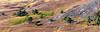 Mar Lodge Estate 19 September 2017 179.jpg (JamesPDeans.co.uk) Tags: autumn landscape plants gb greatbritain mountains prints for sale trees season colour purple unitedkingdom heather digital downloads licence man who has everything britain deeside nature wwwjamespdeanscouk hills scotland aberdeenshire landscapeforwalls europe uk james p deans photography digitaldownloadsforlicence jamespdeansphotography printsforsale forthemanwhohaseverything