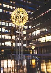 Maybe Festive Hospital Light Decorations