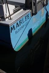 Marlee (justin.hawthorne) Tags: vikingvillage longbeachisland nj jerseyshore