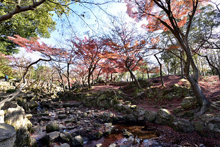 秋日紅葉05