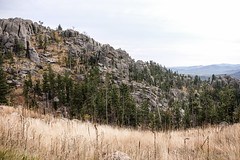 Custer State Park, South Dakota 10/12/17 #custerstatepark #southdakota (Sharon Mollerus) Tags: custer southdakota unitedstates us cfptig17