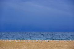 Aguantando frío - Las gaviotas y yo (Fnikos) Tags: sea water wave sky skyline cloud coast beach waterfront sand seascape landscape seagulls outdoor