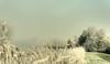 The house of Hansel and Gretel. (Alex-de-Haas) Tags: smorgens 50mm d5 hdr january nederland nederlands netherlands nikkor nikkor50mm nikon nikond5 noordholland schoorldammerbrug thenetherlands westfriesland bevroren bridge brug cold daglicht daylight fog foggy freezing frozen handheld haze hazy highdynamicrange house houses huis huizen januari kou koud landscape landschap licht light mist misty morning nevel nevelig ochtend vrieskou winter